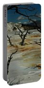 Mammoth Springs Portable Battery Charger