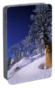 Man Skiing Through Trees In Fresh Portable Battery Charger