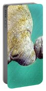 Manatee Trichechus Manatus Portable Battery Charger