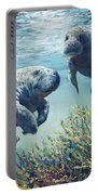 Manatee's Portable Battery Charger