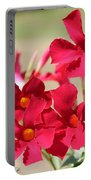 Mandevilla Named Sun Parasol Crimson Portable Battery Charger