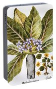 Mandrake And Buttercup Portable Battery Charger