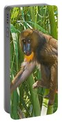 Mandrill Female Portable Battery Charger