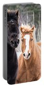 Manes Flying Portable Battery Charger