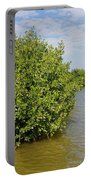 Mangrove Fores Portable Battery Charger by Carol Ailles