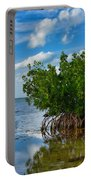 Mangrove Portable Battery Charger