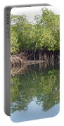 Mangrove Refelections Portable Battery Charger