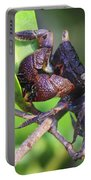 Mangrove Tree Crab Portable Battery Charger