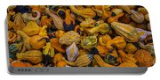 Many Colorful Gourds Portable Battery Charger