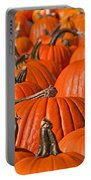 Many Pumpkins In A Row Art Prints Portable Battery Charger