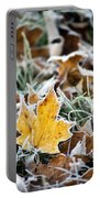 Maple Frost Leaf Art Portable Battery Charger