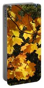 Maple Gold Portable Battery Charger