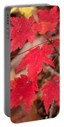 Maple Leaf Palette Portable Battery Charger