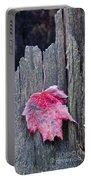 Maple Leaf - Uw Arboretum - Madison Portable Battery Charger