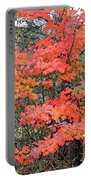 Maple Rush In The Fall Portable Battery Charger