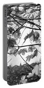 Maple Sunset - Paint Bw Portable Battery Charger