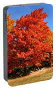 Maple Tree Portable Battery Charger