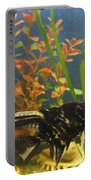 Marble Angelfish Kisses Portable Battery Charger