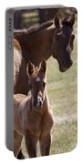 Mare And Foal   #0659 Portable Battery Charger