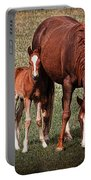 Mare With Foal Portable Battery Charger