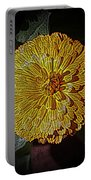 Marigold Digitized Portable Battery Charger