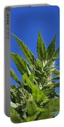 Marijuana Portable Battery Charger