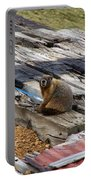 Marmot Resting On A Railroad Tie Portable Battery Charger