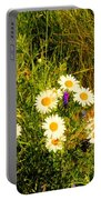 Marshall Point Daisies Portable Battery Charger