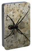 Maryland Black Widow Portable Battery Charger