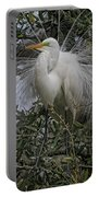 Mating Plumage Portable Battery Charger