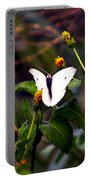 Maui Butterfly Portable Battery Charger
