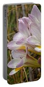 Mauve Freesia In The Wild Portable Battery Charger