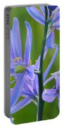 Meadow Camas Portable Battery Charger