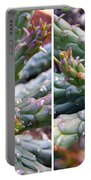 Medusa Succulent In Stereo Portable Battery Charger