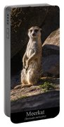Meerkat Portable Battery Charger