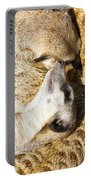 Meerkat Group Resting Portable Battery Charger