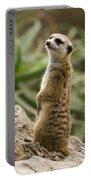 Meerkat Mongoose Portrait Portable Battery Charger