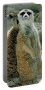 Meerkats Suricata Suricatta Portable Battery Charger