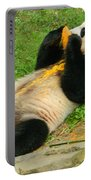 Mei Xiang Chowing On Frozen Treat Portable Battery Charger