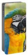 Mele E Manono Ia Ea Macao Tropical Birds Of Hawaii Portable Battery Charger