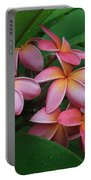 Melia Hae Hawaii Pink Tropical Plumeria Keanae Portable Battery Charger