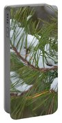 Melting Snow In The Pines Portable Battery Charger