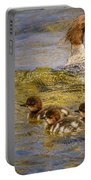 Merganser Lake Tahoe Portable Battery Charger