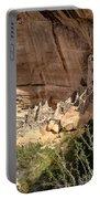 Mesa Verde National Park 1 Portable Battery Charger