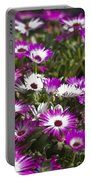Mesembryanthemums 5 Portable Battery Charger
