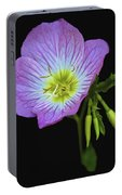Mexican Primrose On Black 2 Portable Battery Charger