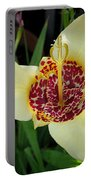 Mexican Shell Flower Portable Battery Charger