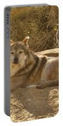 Mexican Wolf Close Up Portable Battery Charger