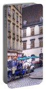 Michaelerplatz. Vienna Portable Battery Charger