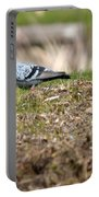 Michigan Rock Pigeon Portable Battery Charger